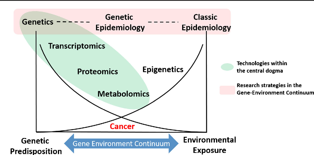 Environmental Influences In The Etiology Of Colorectal Cancer The Premise Of Metabolomics Semantic Scholar