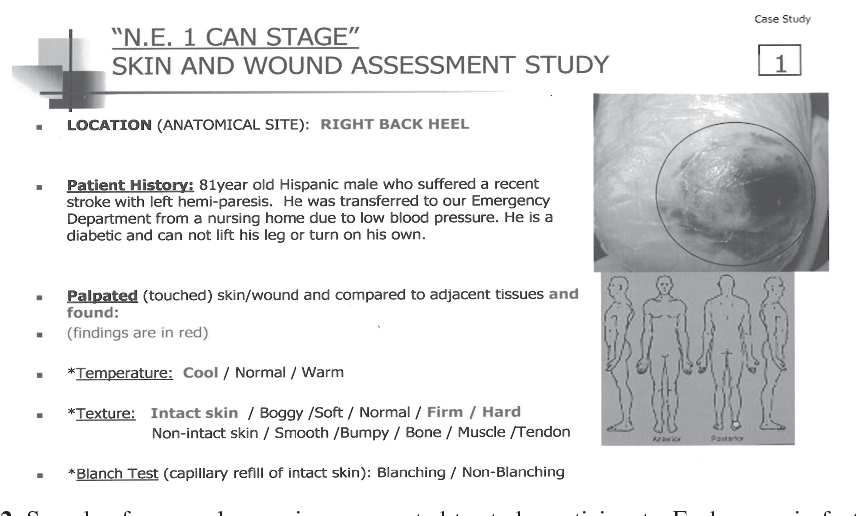 Figure 2 from Validation of the NE1 wound assessment tool to