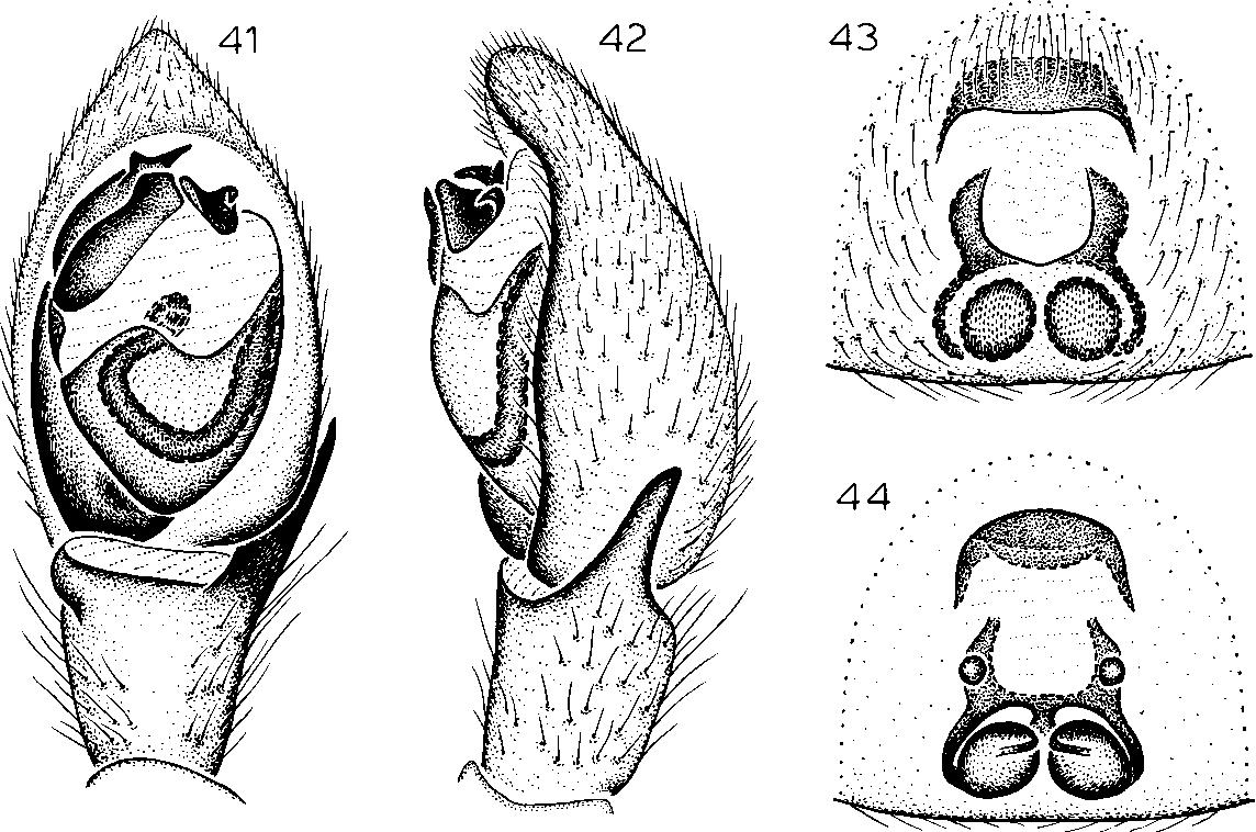 figure 41-44