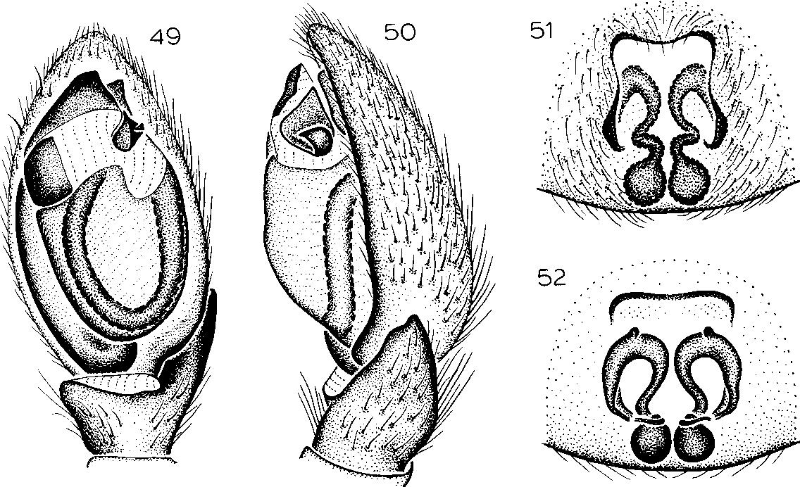 figure 53-56