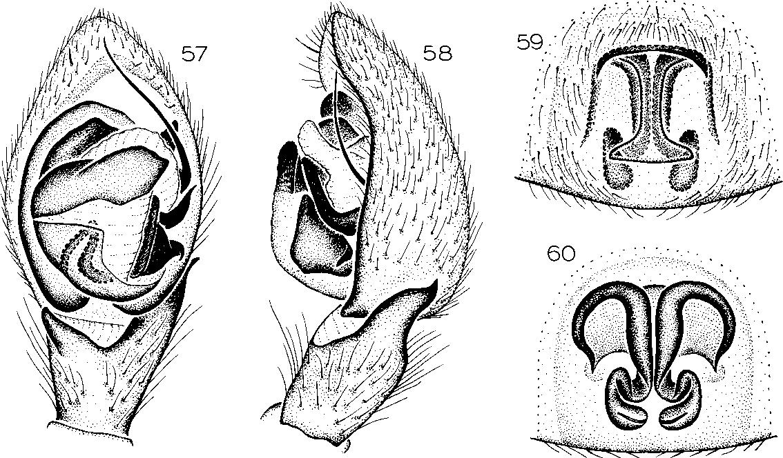 figure 61-64