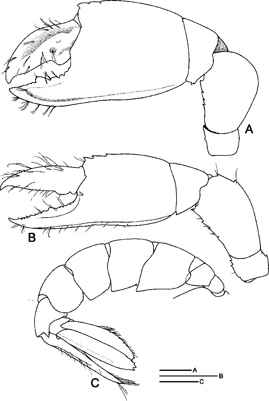 figure 54