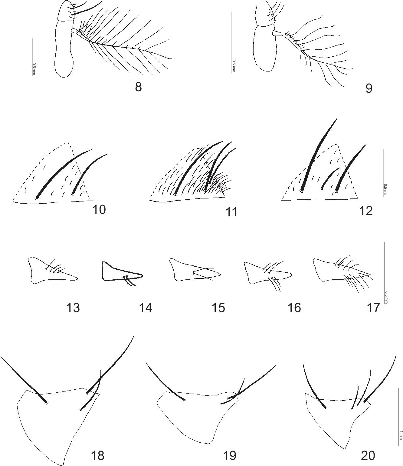 figure 8–20