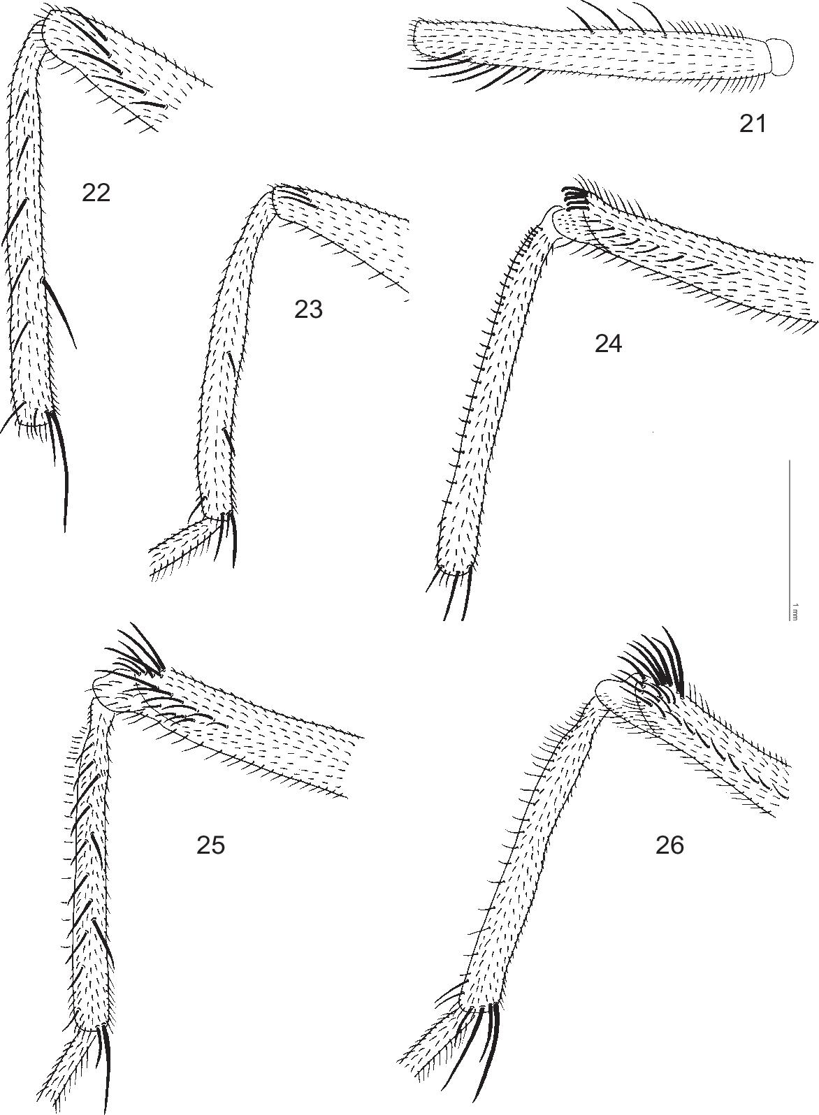 figure 21–26