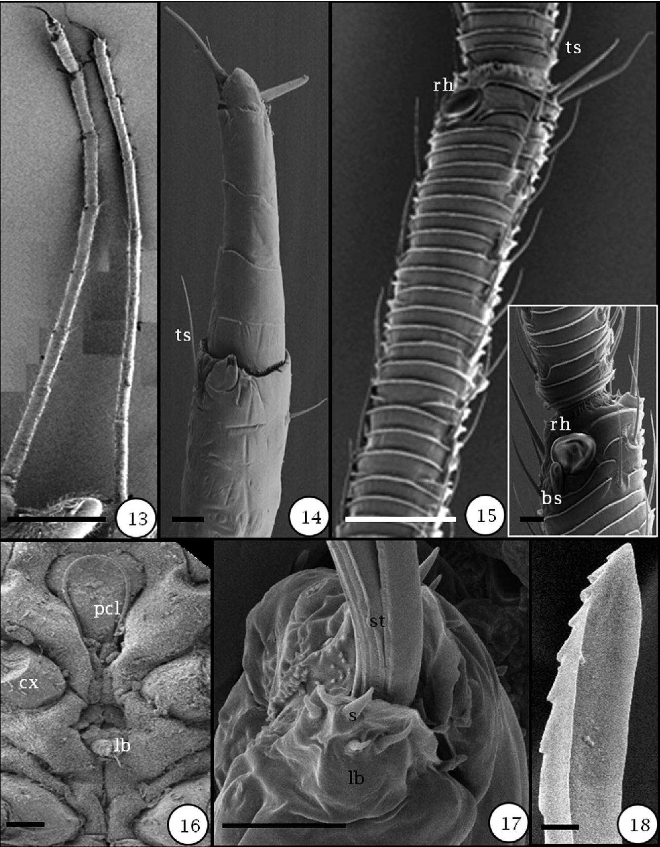 figure 13–18