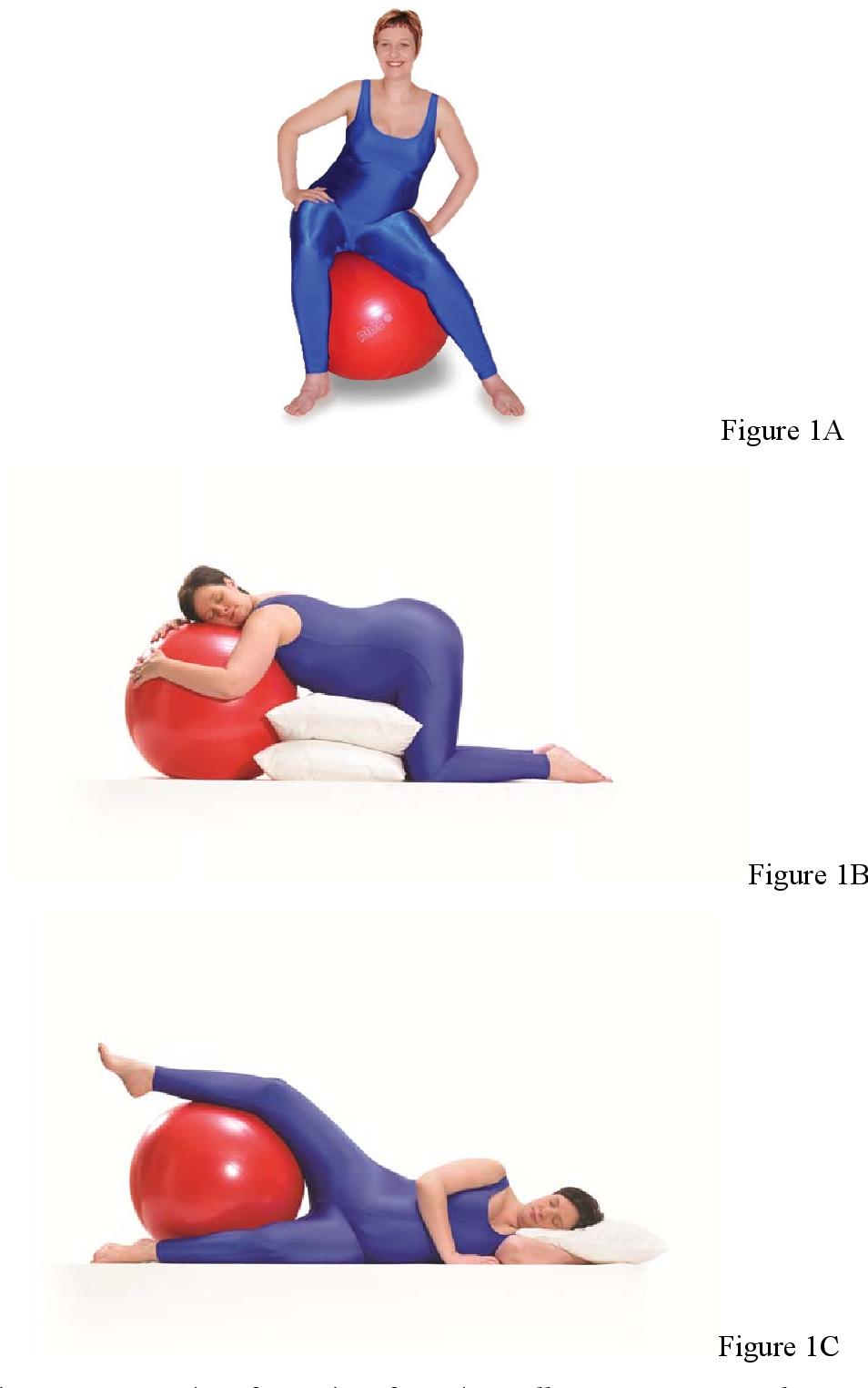 Figure 1 From L Effet De L Entrainement Avec Le Ballon D Exercice Pendant La Grossesse Sur L Accouchement Semantic Scholar