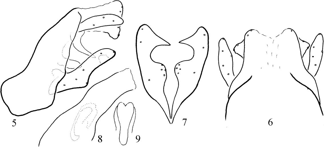 figure 5−9