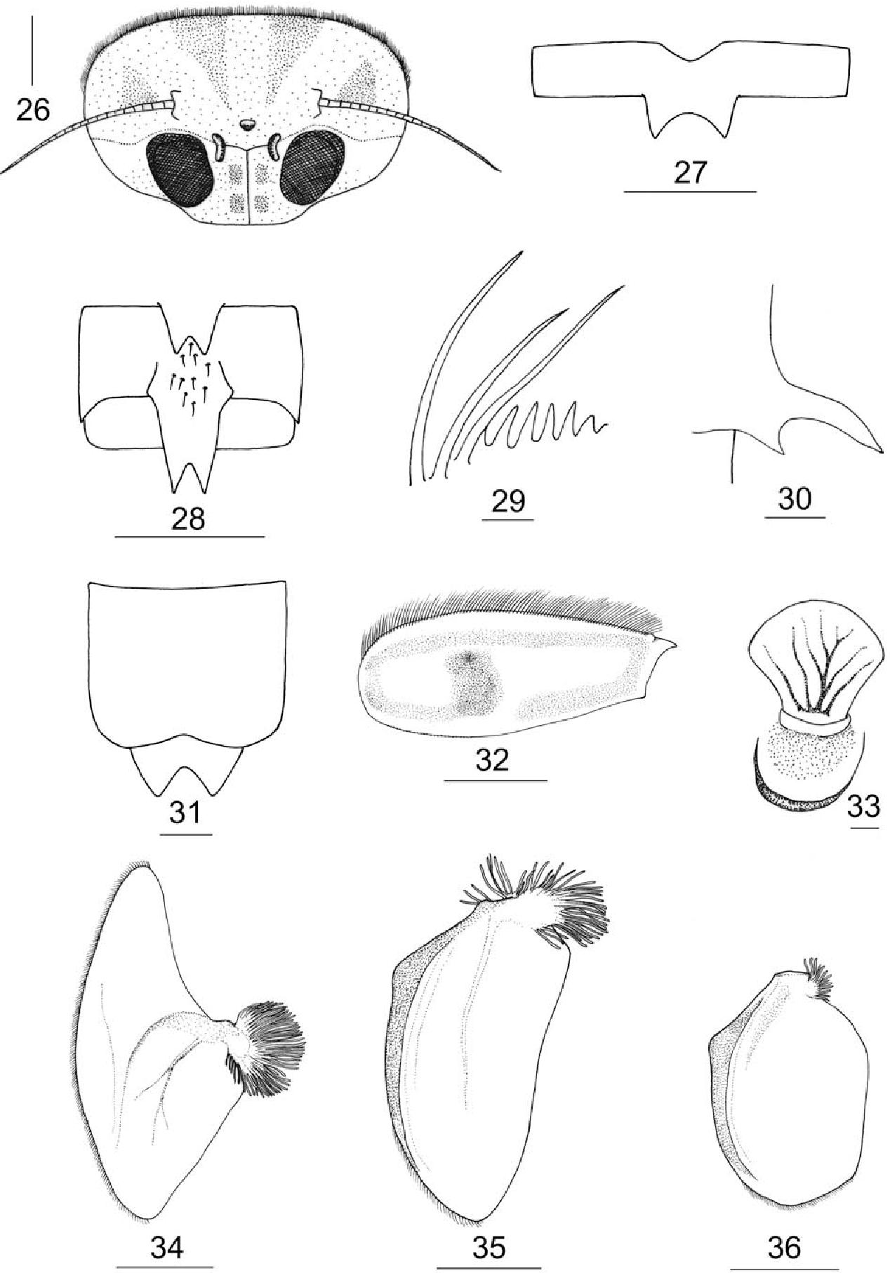 figure 26–36