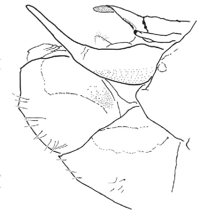 figure B29