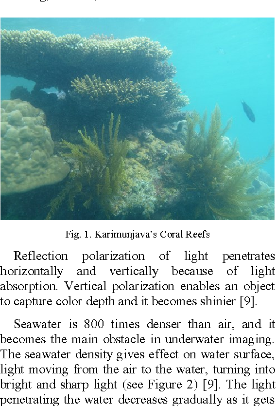 Figure 1 from COLOR ENHANCEMENT OF UNDERWATER CORAL REEF