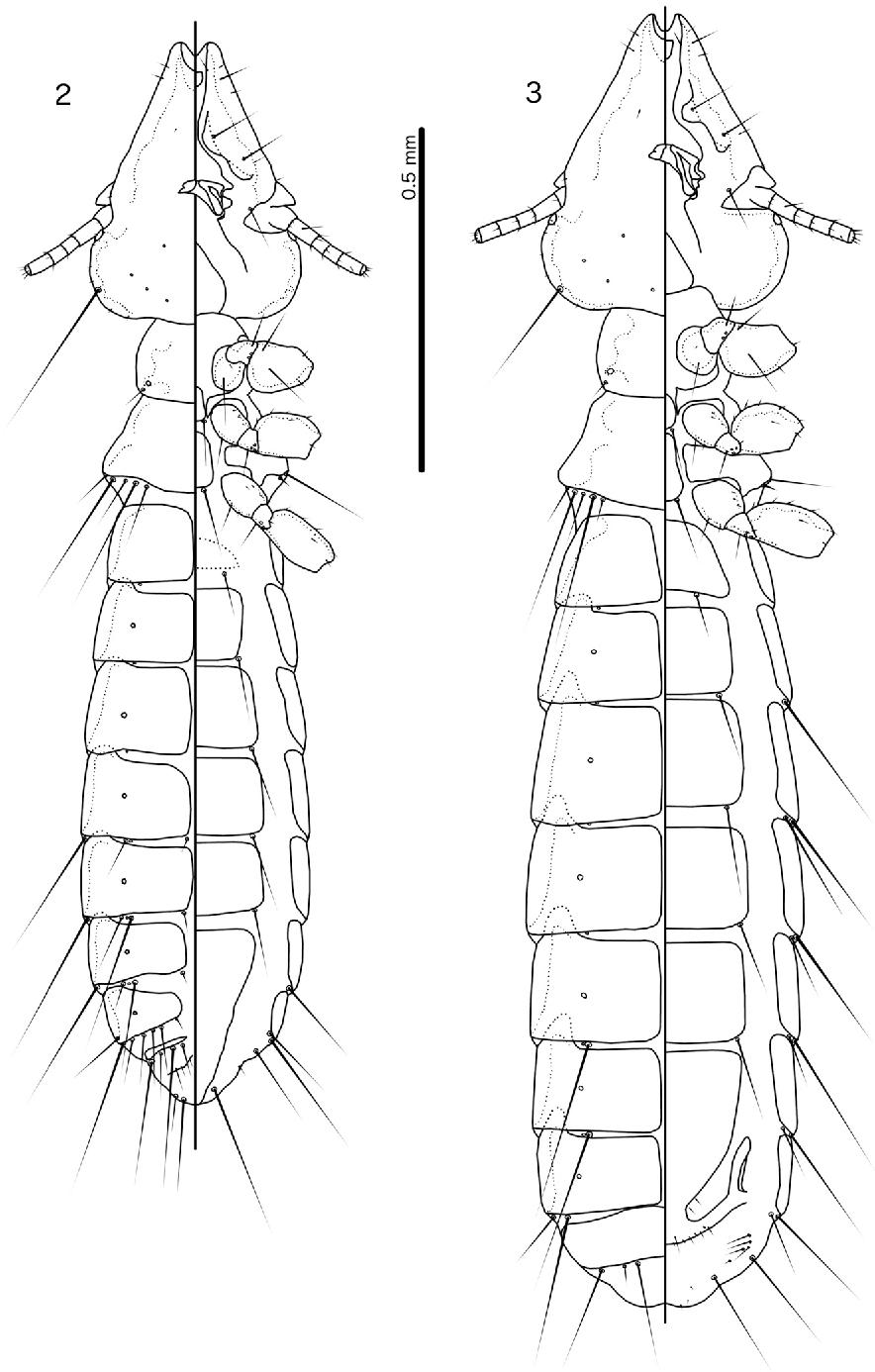 figure 2–3