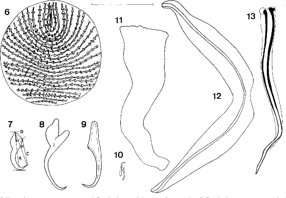 figure 6–13