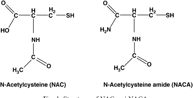 Effects of N-acetylcysteine amide (NACA), a novel thiol