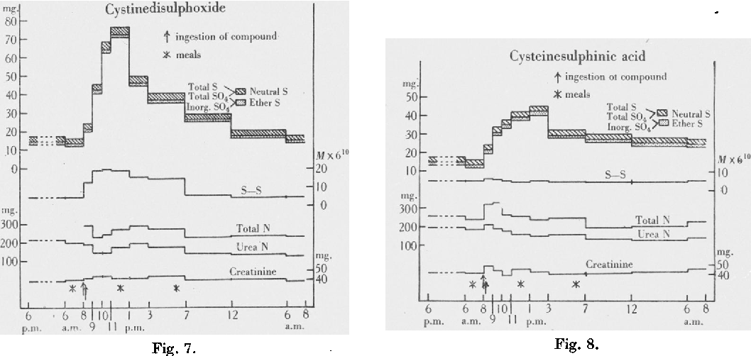Figure 7 from METABOLISM OF SULPHUR VI   OXIDATION IN THE