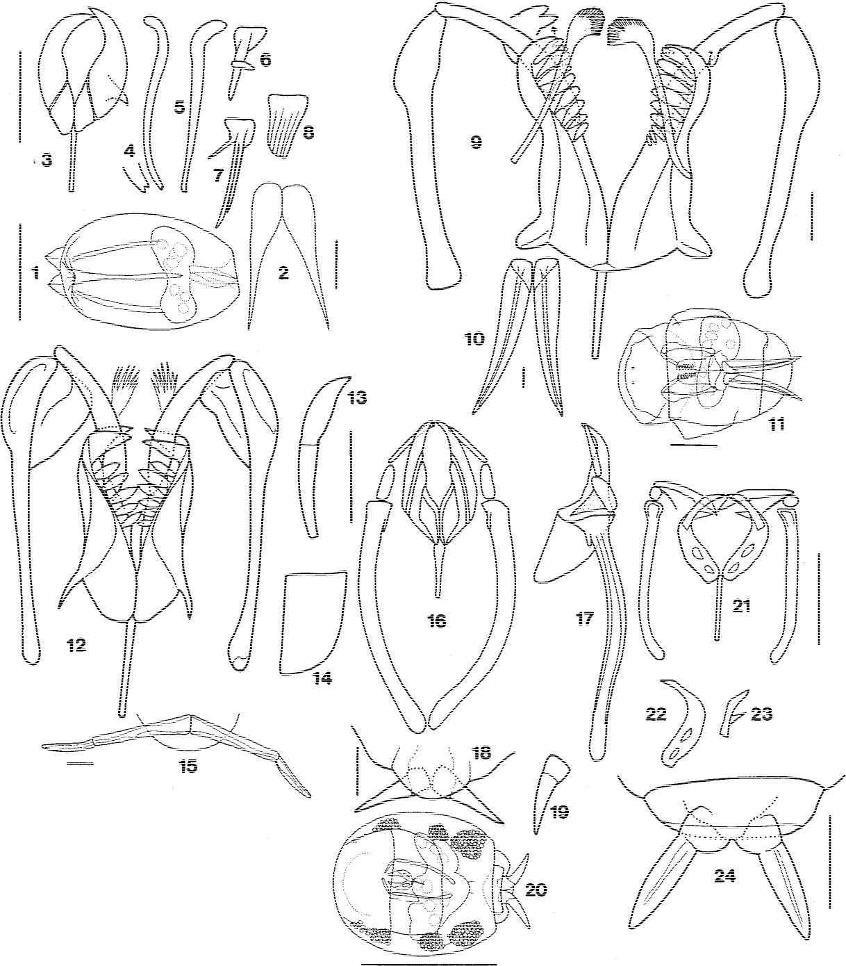 figure 1–24