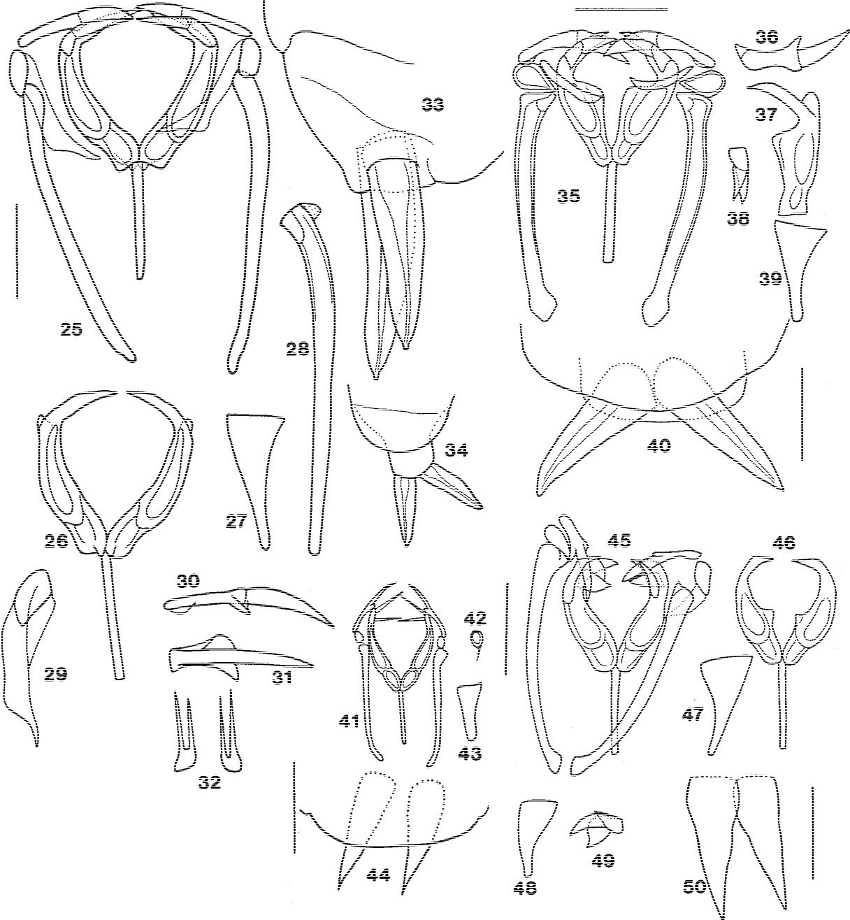 figure 25–34