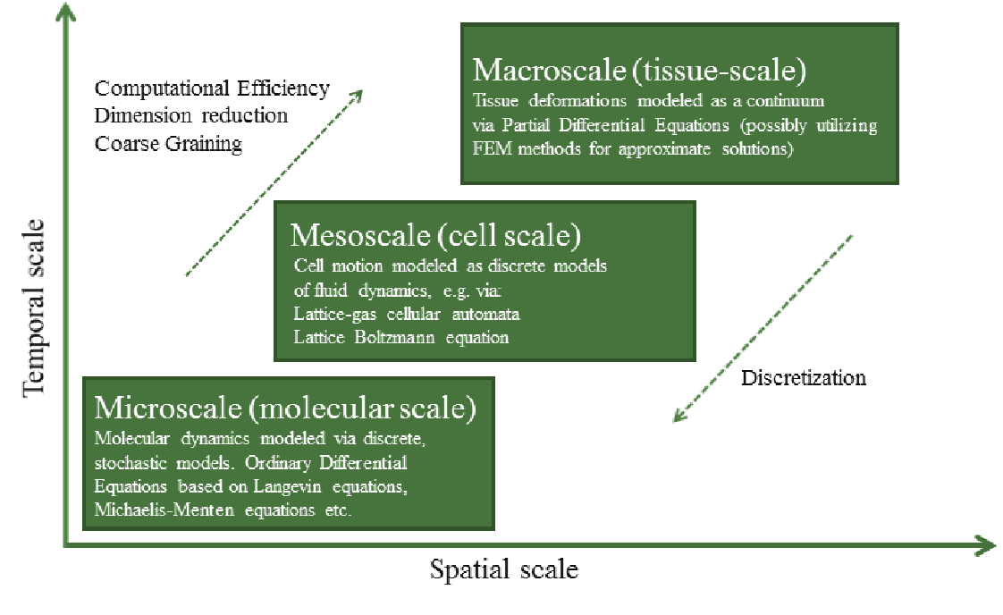Figure 7 from Biology meets physics: Reductionism and multi