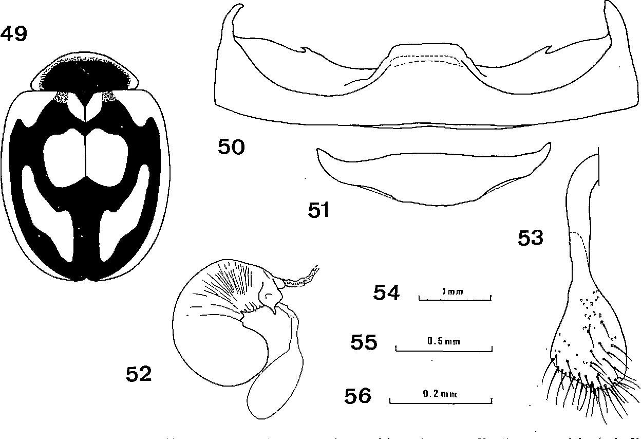 figure 49-53