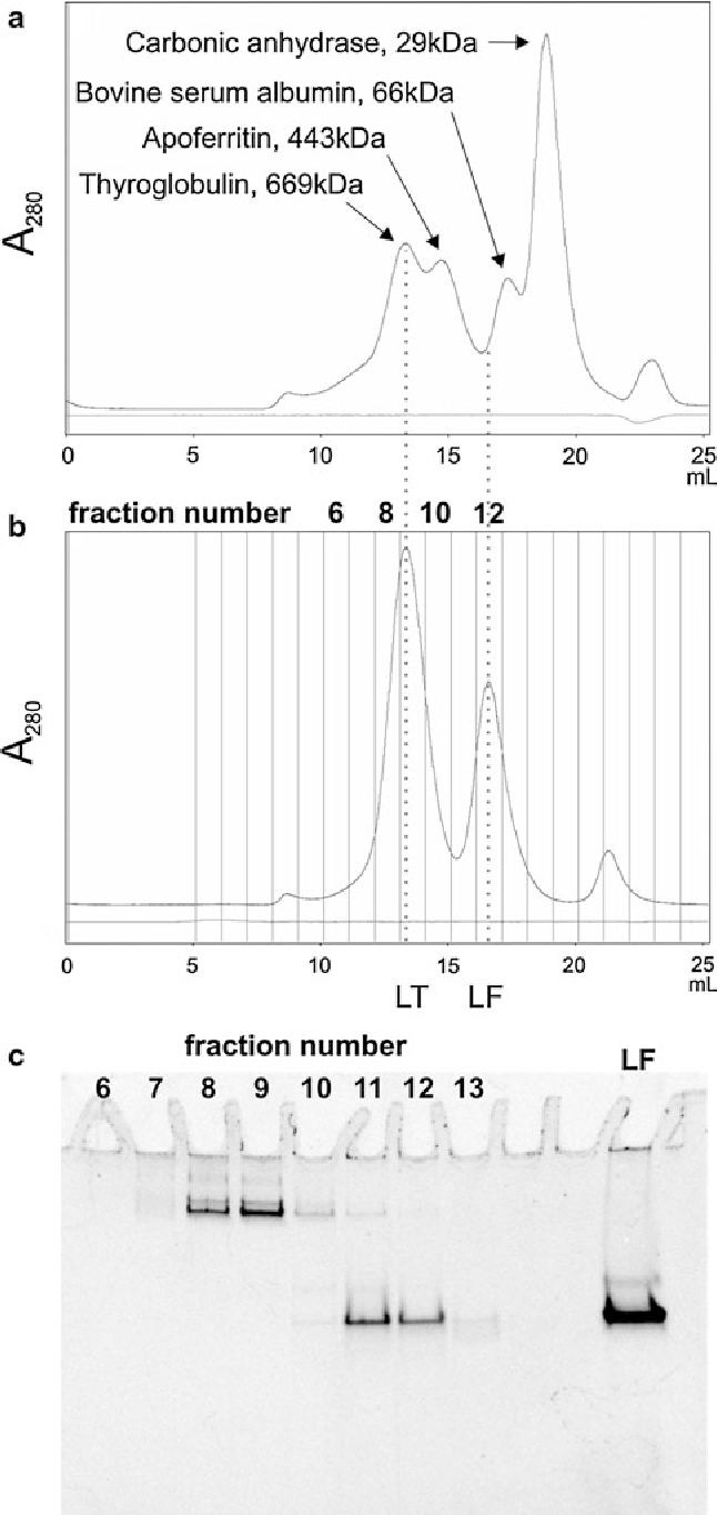 Fig. 2 Purification of LT in vitro. a Retention times of molecular weight standards run through a Superose 6 gel filtration column. b LT assembly reaction run through the same column with fraction numbers shown on top of the graph. c Peak fractions from (b) are separated on a native gel. Lane numbers correspond to fraction numbers from the chromatogram in (b). The small difference between the protein quantities observed on the chromatograph (b) and the gel (c) are due to a slight miscalibration of the dead volume in the instrument tubing