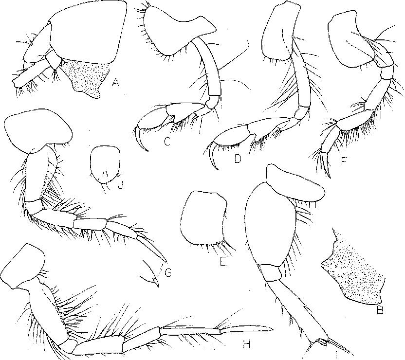 figure 53