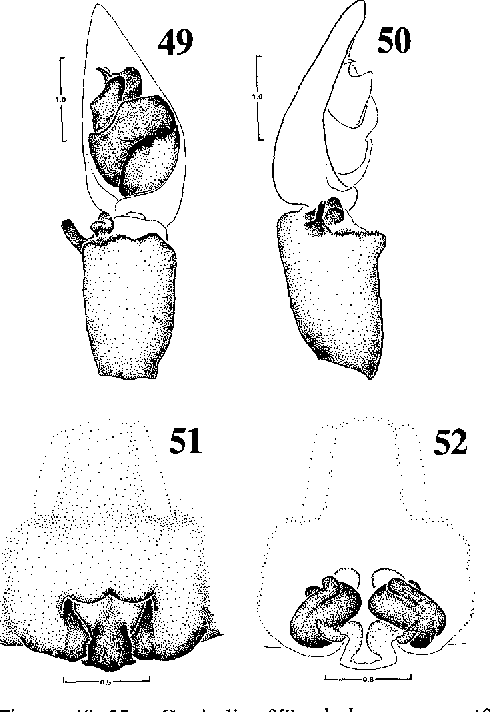 figure 49-52