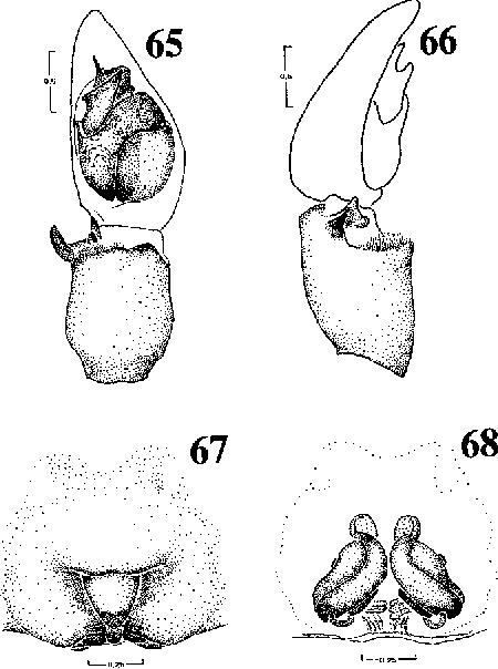 figure 65-68