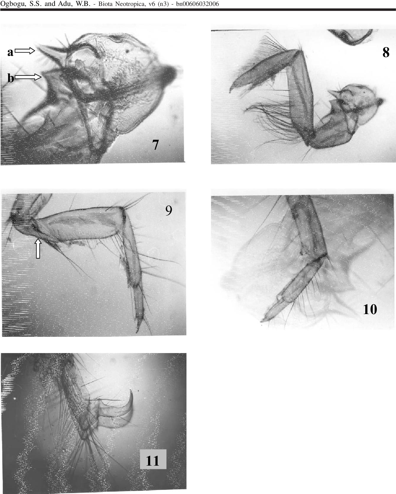 figure 7-11