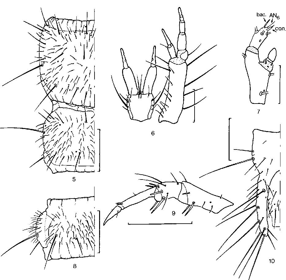 figure 5-10