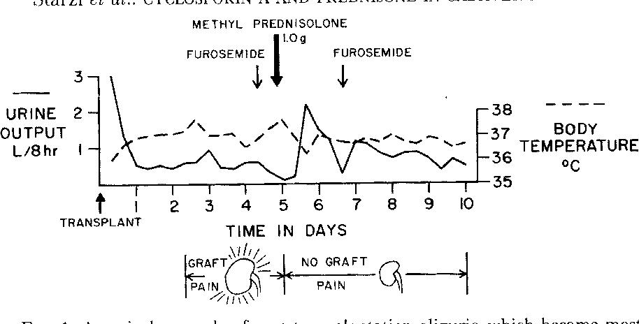 Pdf The Use Of Cyclosporin A And Prednisone In Cadaver Kidney Transplantation Semantic Scholar