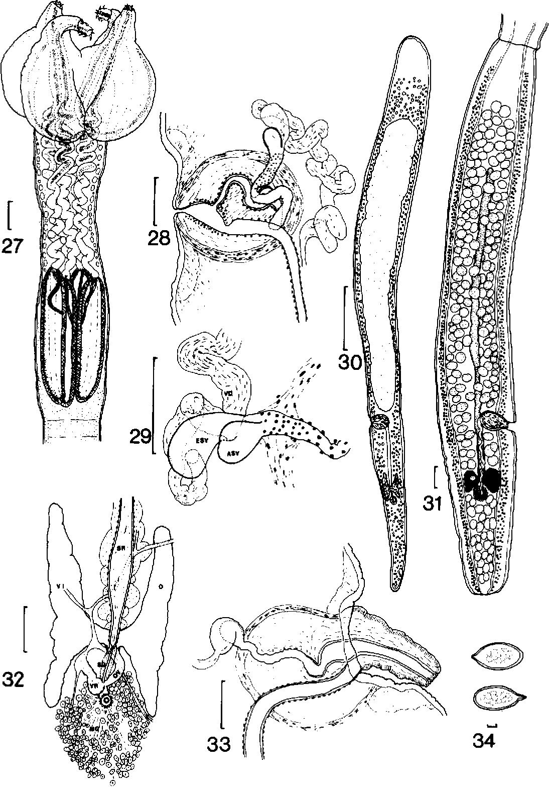 figure 27-34