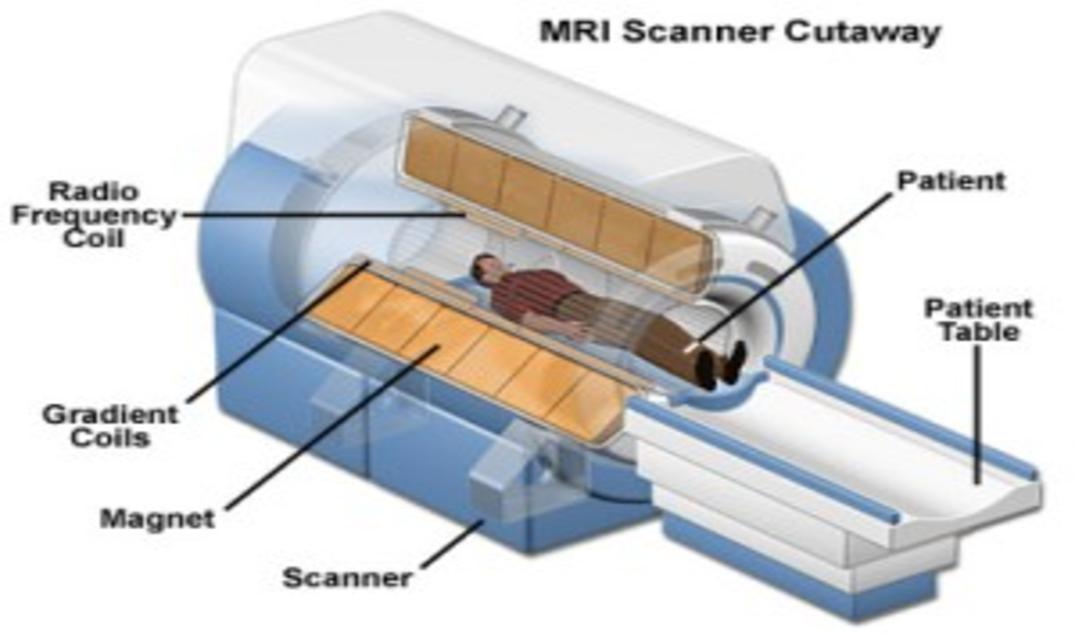 mri machine diagram wiring diagrams block diagram of mri diagram of mri #10