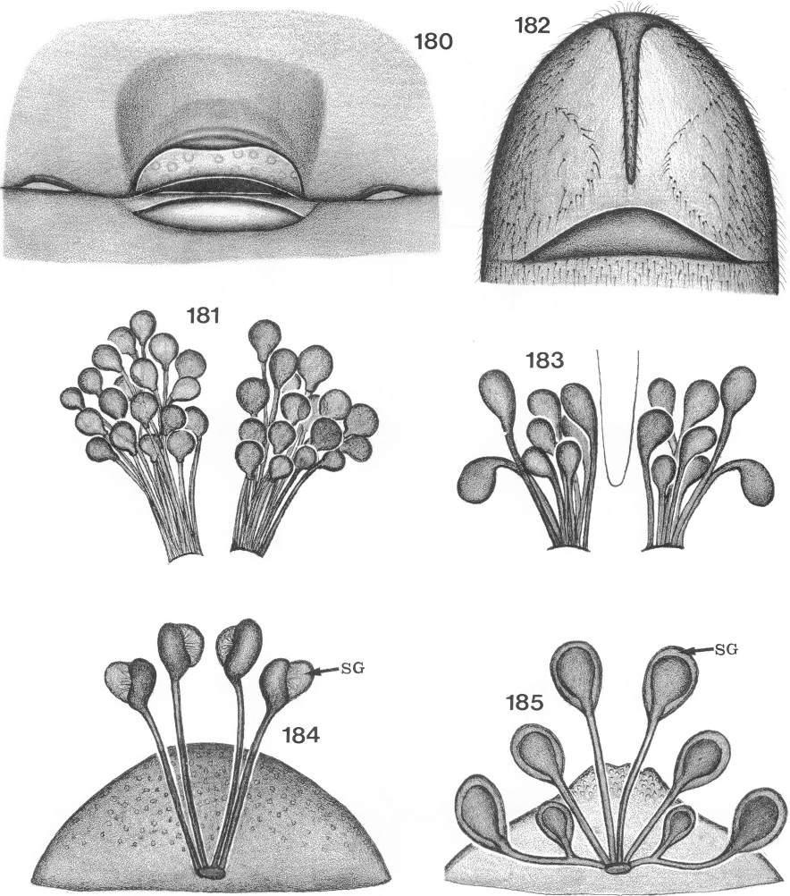 figure 140-142