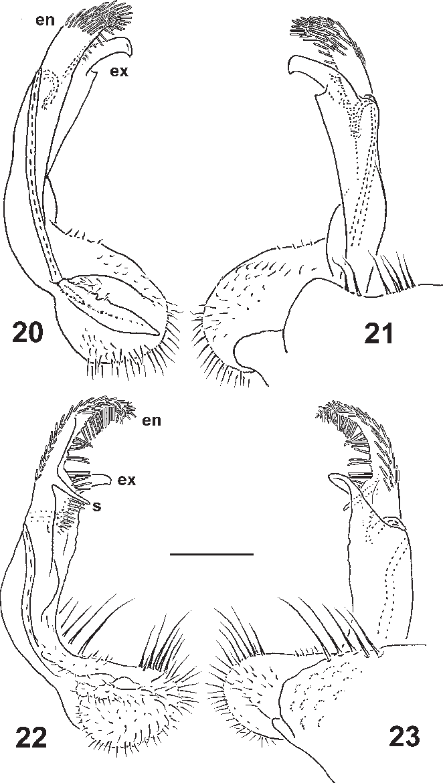 figure 20–23