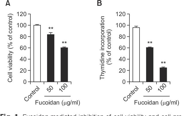 Pdf Antitumor Effects Of Fucoidan On Human Colon Cancer Cells Via Activation Of Akt Signaling Semantic Scholar