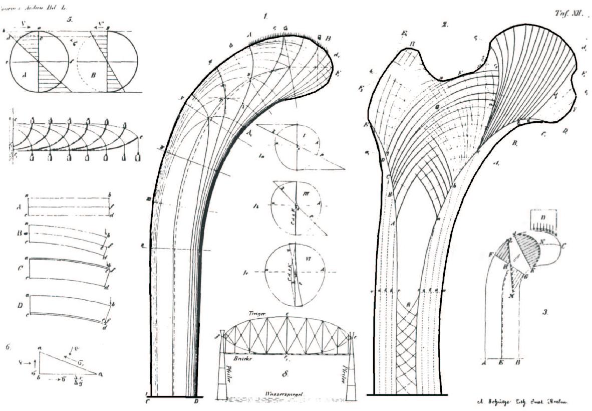 figure 2.13