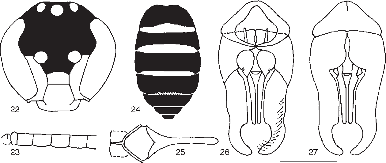 figure 22‑27