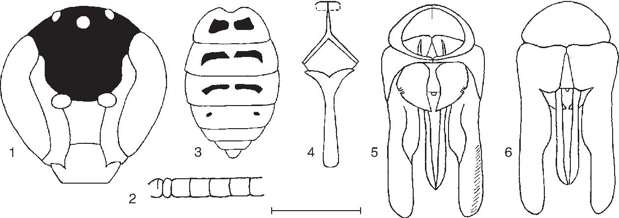 figure 1‑6