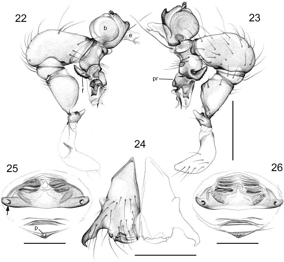 figure 22-26