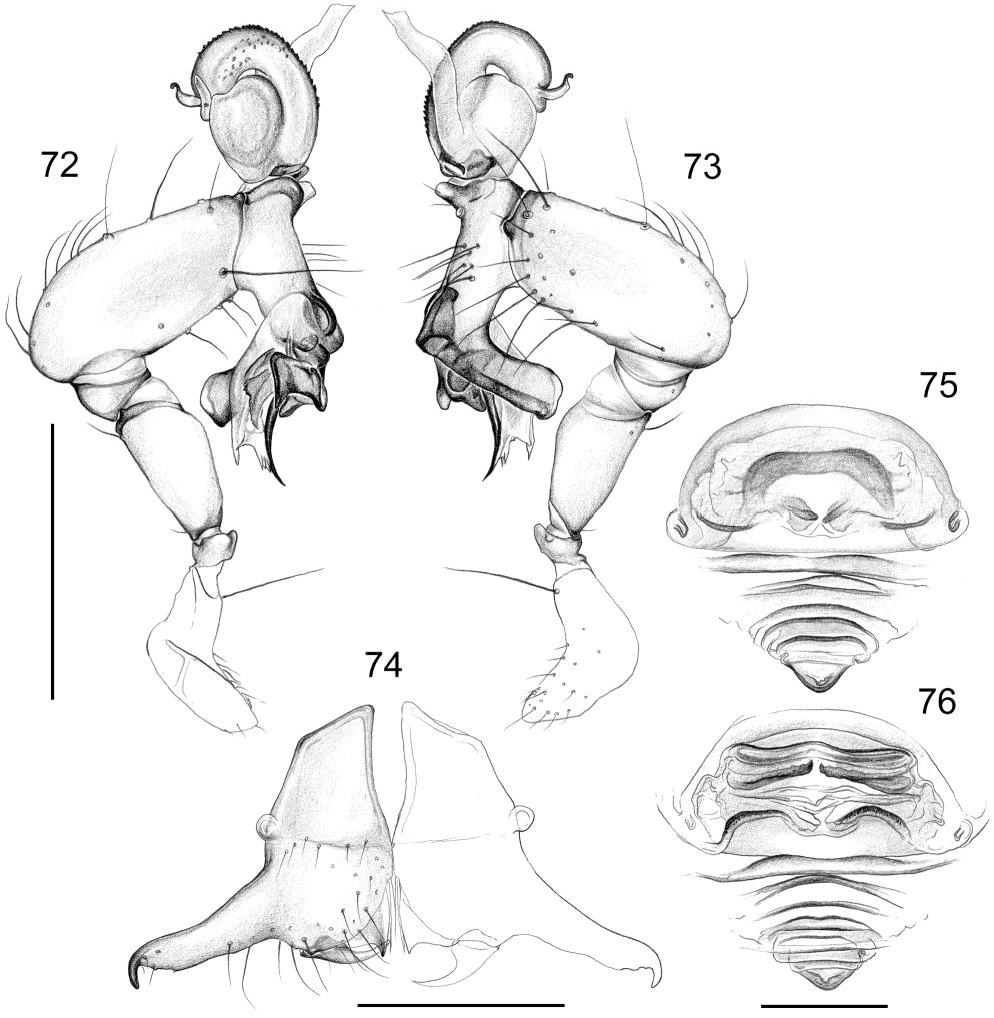 figure 72-76