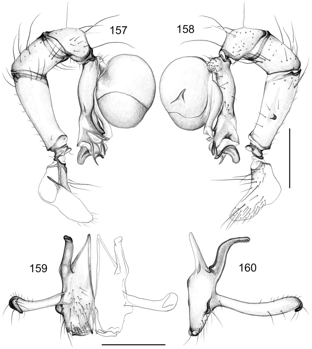 figure 157-160