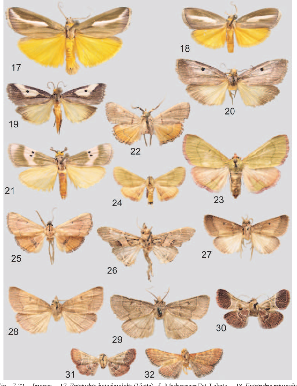 figure 17-32