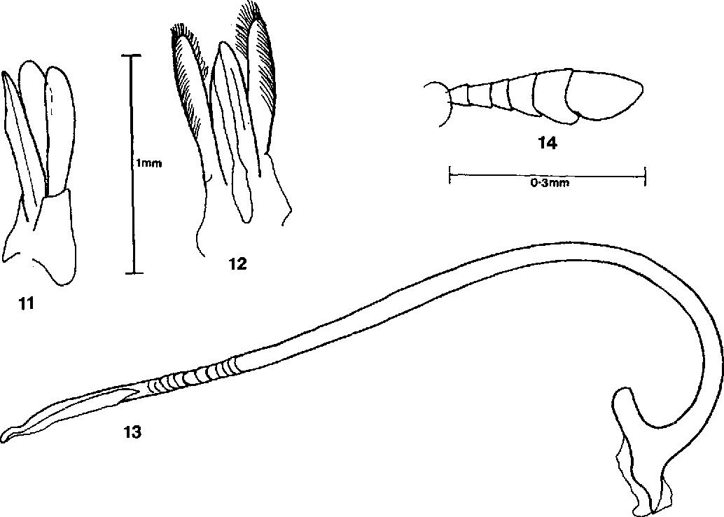 figure 11-14