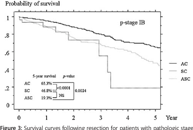 Figure 3: Survival curves following resection for patients with pathologic stage IB adenocarcinoma (AC), squamous cell carcinoma (SC) and adenosquamous carcinoma (ASC).