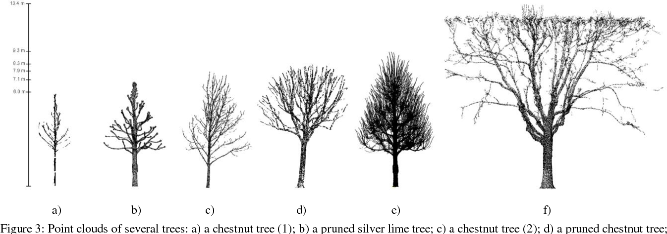 Figure 3 From From Tls Point Clouds To 3d Models Of Trees A