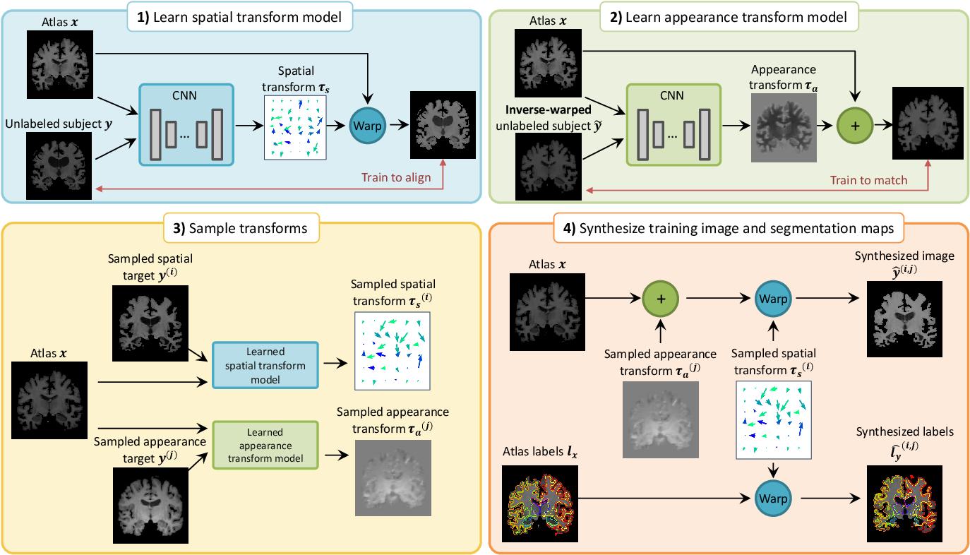 PDF] Data Augmentation Using Learned Transformations for One-Shot Medical  Image Segmentation | Semantic Scholar