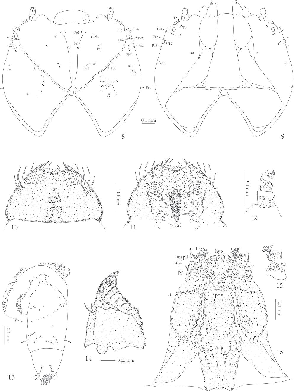 figure 8–16