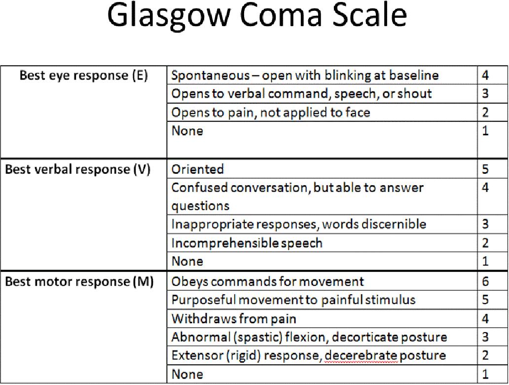 Assessment Printable Glasgow Coma Scale - Amazon Com ...
