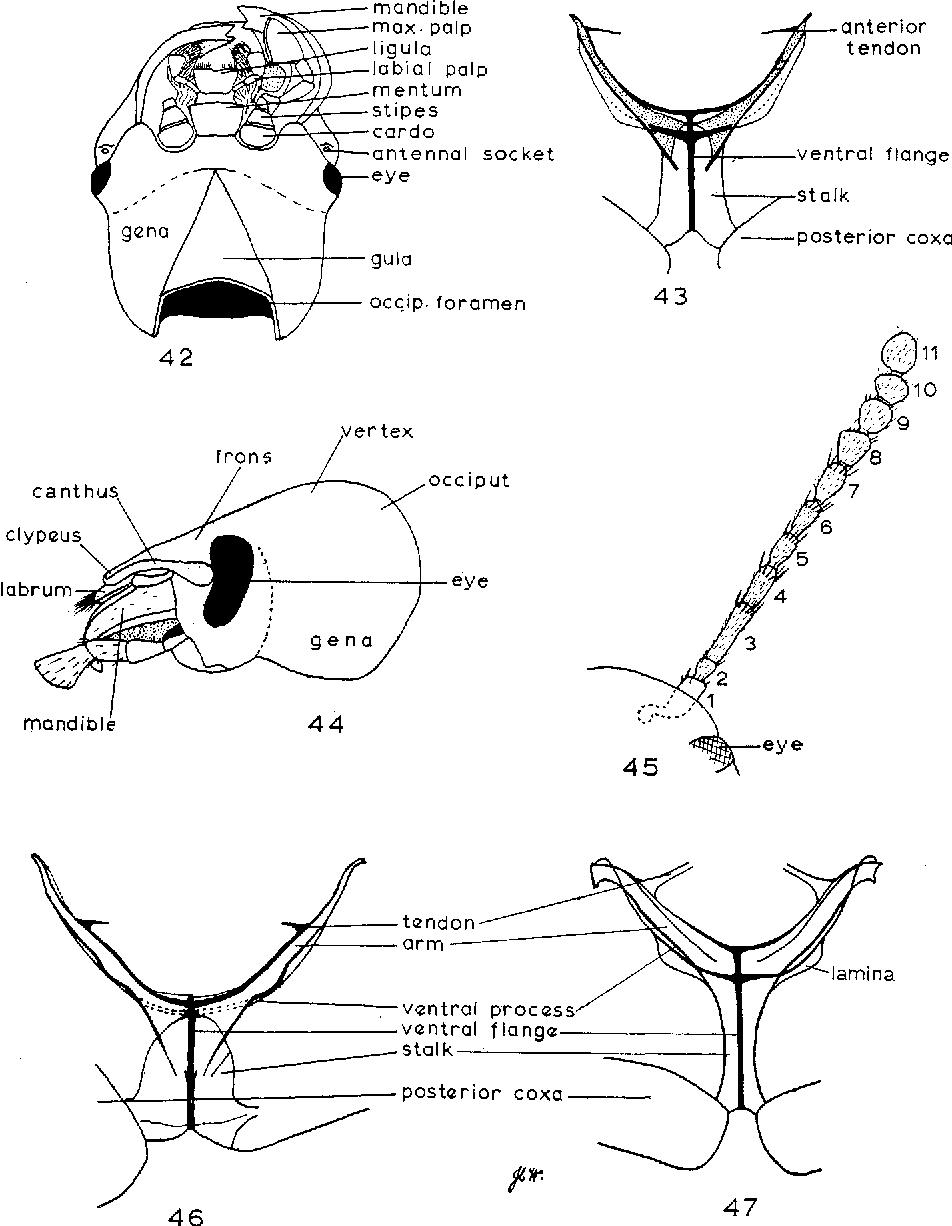 figure 42-47