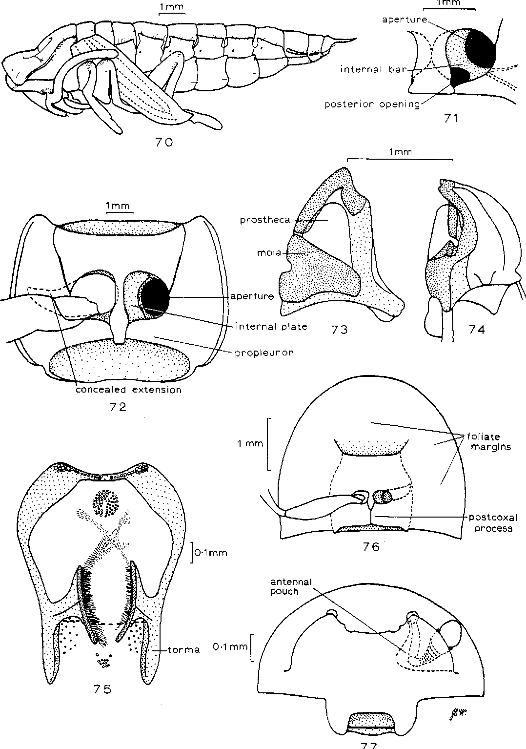 figure 70-77