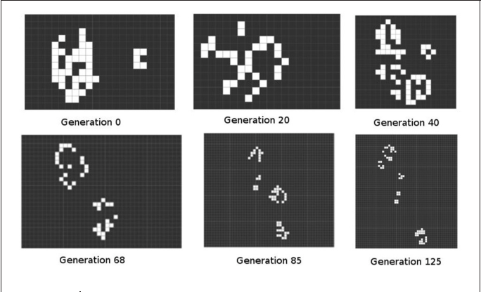 """Figure 3 from Conway's """"Game of Life"""" and the Epigenetic"""